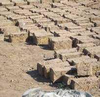 Достоинства и недостатки саманных блоков