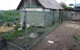 Забор из сетки пластиковой своими руками